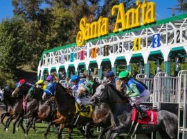 Starting Jan. 1, horses leaving the Santa Anita starting gate in a stakes race will do so without the anti-bleeding medication, Lasix. (Image: Santa Anita)
