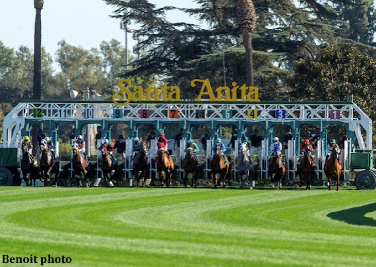 Santa Anita New Turf Chute