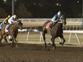 Kentucky Derby futures bettors paid attention to Senor Buscadore's last-to-first victory in the Springboard Mile. (Image: Dustin Orona Photography/Remington Park)