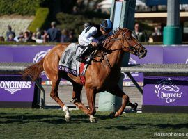 Trainer Graham Motion's Sharing already owns a Grade 1 win at the 2019 Breeders' Cup Juvenile Fillies Turf. She goes for her second as the 3/1 favorite in the American Oaks at Santa Anita Park. (Image: Horsephotos.com)