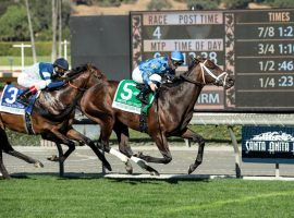 Smooth Like Strait was the only favorite to win the five graded stakes races on Santa Anita Park's opening-day card. He nipped Storm the Court in the Grade 2 Mathis Brothers Mile. (Image: Benoit Photography)