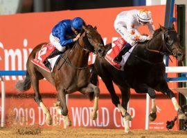 Thunder Snow (right) captured the last two Dubai World Cups. The late March race kept its $12 million purse as undercard race purses were trimmed due to COVID-19. (Image: Erika Rasmussen/Dubai Racing Club)