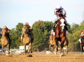 This image of Tiz the Law pulling away from his foes in the stretch played out for the sixth and final time in August's Travers Stakes. The four-time Grade 1 winner and Belmont Stakes champion suddenly retired Wednesday after suffering bone bruses in his leg. (Image: Spencer Tulis/The Saratogian)