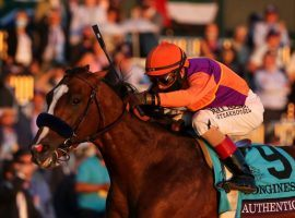 Authentic's dynamic victory in the Breeders' Cup Classic earned him the No. 2 spot on Longines 2020 World Racing Awards. (Image: Breeders' Cup)