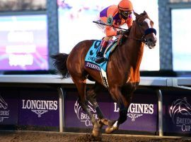 Winning the Breeders' Cup Classic two months after capturing the Kentucky Derby likely made Authentic the Horse of the Year. The 50th Eclipse Awards will be announced Jan. 28. (Image: Horsephotos.com)
