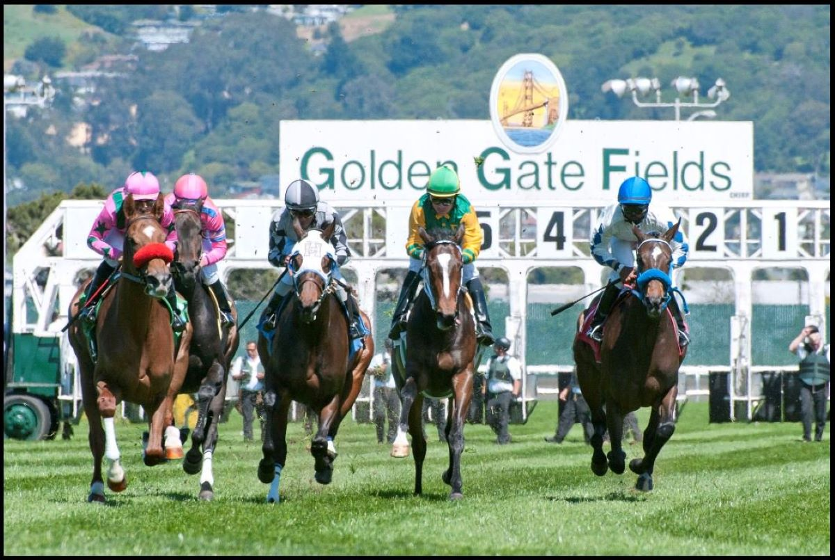 Golden Gate Fields dibuka kembali