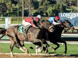 Medina Spirit (back) showed he is a legitimate Kentucky Derby prospect Saturday. He held off Roman Centurian (5) and Hot Rod Charlie (in between) for the last quarter-mile of the Robert B. Lewis Stakes at Santa Anita. (Image: Benoit Photo)