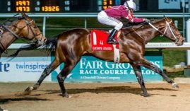 Lecomte Stakes winner Midnight Bourbon opens at 30/1 in the Kentucky Derby Future Wager Pool 2. (Image: Lou Hodges Jr./Hodges Photography)