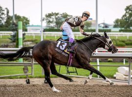 Mighty Heart's 7 1/2-length victory in the 2020 Queen's Plate came with the third-largest handle in event history. The 2021 event is Aug. 22. (Image: John Watkins)
