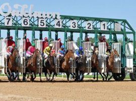 "Oaklawn Park opens its 2021 season allowing an unspecified ""limited"" amount of spectators inside. (Image: Tom Ferry)"