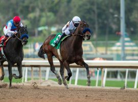 Life Is Good won Saturday's Sham Stakes by three-quarters of a length over stablemate Medina Spirit. Kentucky Derby futures bettors rewarded Medina Spirit with an odds cut, while leaving favorite Life Is Good alone. (Image: Benoit Photo)