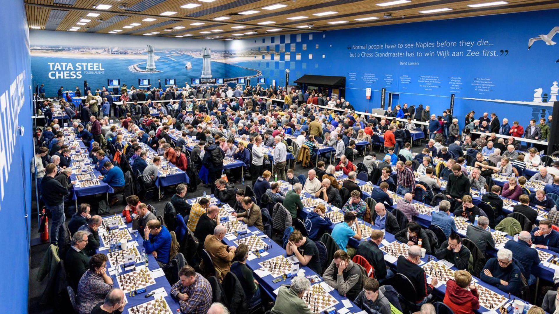 Tata Steel Chess Tournament odds