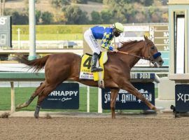 Trainer Bob Baffert called Charlatan's Malibu Stakes win 'pure brilliance.' He would take more of that from his 9/5 favorite in Saturday's $20 million Saudi Cup. (Image: Benoit Photo)