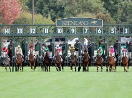 Keeneland offers 10 turf stakes races on its 15-day Spring Meet. It begins April 2 and runs through April 23. (Image: Coady Photography)