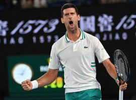 Novak Djokovic can win his third straight Australian Open title if he can get past Daniil Medvedev in Sunday's final. (Image: Imago)