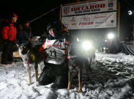 Dallas Seavey is flanked by his two lead dogs, North (left) and Gamble (right), after he secured his fifth victory in the Iditarod Alaska Trail Sled Dog Race. (Image: Marc Lester/ADN)