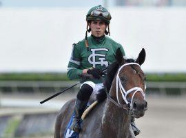 Irad Ortiz Jr. usually throws his punches on the track with his riding skill. He was fined $1,000 for throwing them at fellow rider Paco Lopez after Friday's fourth race at Gulfstream Park. (Image: Ryan Thompson/Coglianese Photos)