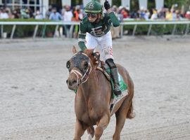 Irad Ortiz Jr. celebrates after breaking the Gulfstream Park Championship Meet riding title aboard Known Agenda i the Florida Derby. (Image: Ryan Thompson Photo)