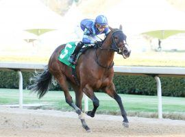 """Joyful Image broke her maiden secon time out earlier this month. Saturday, the Runhappy offspring seeks to be Runhappy's first female stakes winner. Texas furniture magnate Jim """"Mattress Mack"""" McIngvale owns Runhappy. (Image: Coady Photgraphy)"""