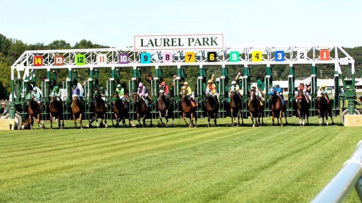 Laurel Park EHV
