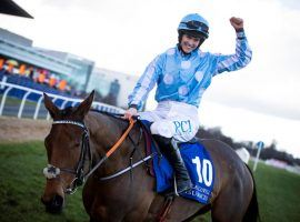 Rachael Blackmore rode into the history books Tuesday, becoming the first female rider to win the Cheltenham Festival's Champion Hurdle. She and Honeysuckle prevailed by 6 1/4 lengths. (Image: Horse Racing Ireland)