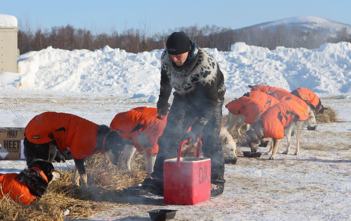 Dallas Seavey 2021 Iditarod, perlombaan kereta luncur anjing Iditarod