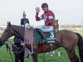 Tiger Roll won't revisit the Grand National winner's circle. Not after his owners pulled him from the famous steeplechase over a weight handicap disagreement. (Image: Paul Grover)