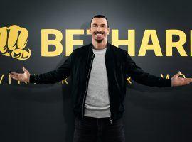 Zlatan Ibrahimovic poses for the bethardgroup.com website. (Image: bethardgroup.com)
