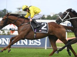 Addeybb and jockey Tom Marquand renew their rivalry with Verry Elleegant in the feature race of The Championships, Day 2: the Queen Elizabeth Stakes. (Image: Racing and Sports)