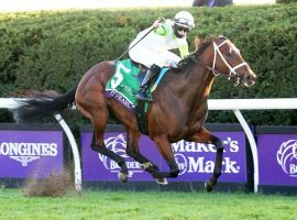 Aunt Pearl and Florent Geroux went gate-to-wire in last fall's Breeders' Cup Juvenile Fillies Turf. She is the likely favorite in the Grade 2 Edgewood on the Kentucky Oaks undercard. (Image: Coady Photography)