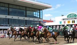 At 10%, Canterbury Park offers the lowest Pick 6 takeout of any North American track. Both the Minnesota track and NYRA's Belmont Park return to a traditional Pick 6 for their upcoming meets. (Image: Canterbury Park)