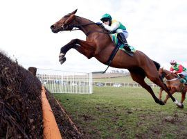 Cloth Cap flies into the 2021 Grand National as a prohibitive favorite for reasons ranging from age to form. (Image: Focusonracing)