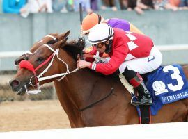 The nose -- in this case, Letruska's -- knows victory. The mare held off champion Monomoy Girl by a nose to win the Grade 1 Apple Blossom Handicap. It marked Letruska's first Grade 1 win in the US. (Image: Coady Photography)