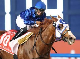 Mystic Guide's convincing vicory in March's Dubai World Cup convinced Longines World's Best Racehorse raters to make the American horse one of the top two horses in their latest rankings. (Image: Coady Photography)