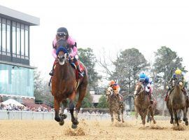 When Stablemates Clash in the Triple Crown