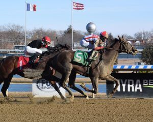 Crowded Trade-Preakness Preview