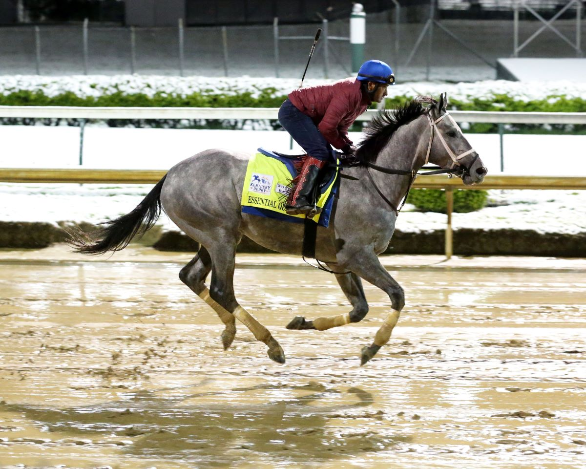 Essential Quality-Preakness pass