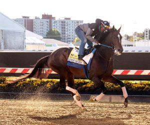 Midnight Bourbon-Preakness