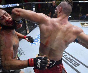 Prochazka Reyes UFC elbow