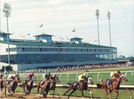 Sam Houston Race Park officials suspended racing on one of its marquee Quarter Horse races after six of 10 horses tested positive for banned substances. (Image: Sam Houston Race Park)