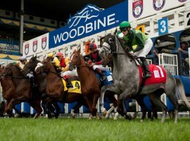 The Woodbine Racetrack gates open June 18. The Canadian track was shuttered due to a provincial COVID-19-related stay-at-home order issued in April. (Image: Woodbine Entertainment)