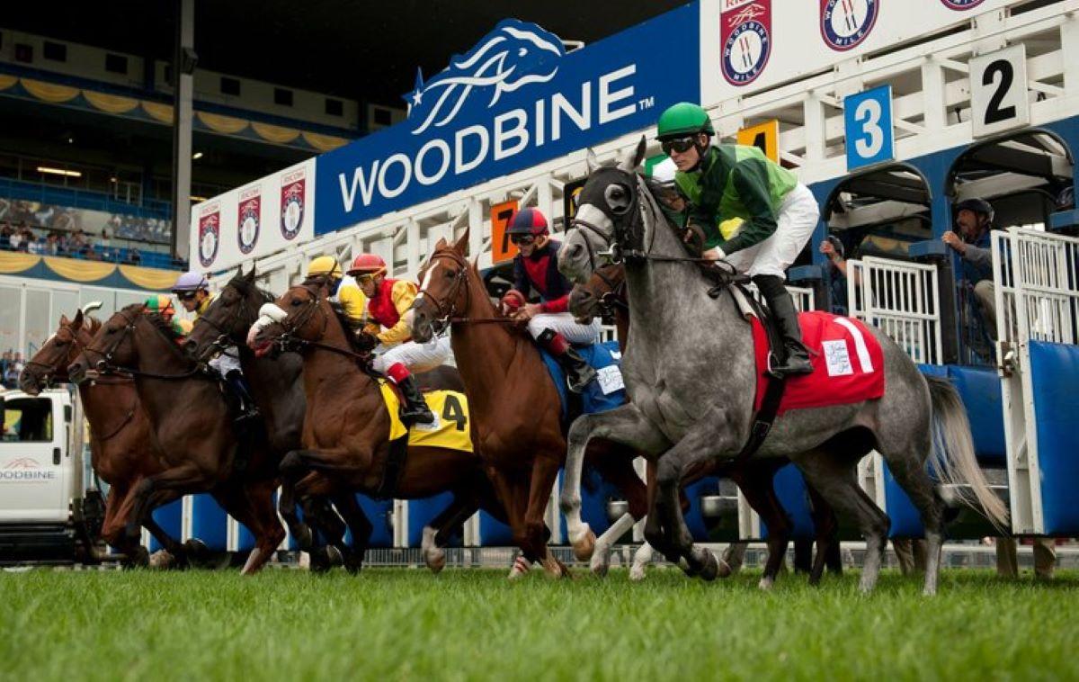Woodbine resumes racing