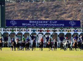 Just like the last time Del Mar played host to the Breeders' Cup in 2017, the seaside track will open to 100% of capacity. (Image: Sean M. Haffey/Getty)