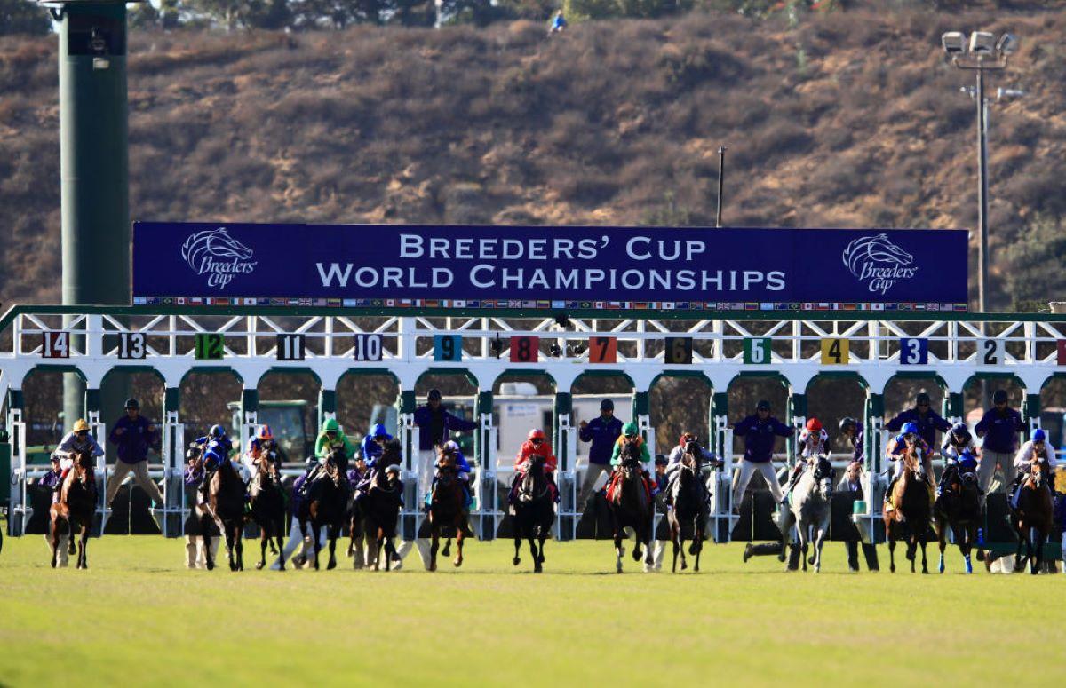 Breeders' Cup Del Mar Gate