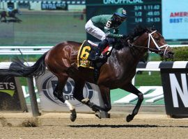 Dr Post won the Grade 3 Westchester Stakes last month. He jumps back into the Grade 1 pool for the first time in 11 months in Saurday's Metropolitan Handicap (Image: Janet Garaguso/NYRA Photo)