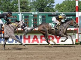 Informative (5) pulled away from favored Ny Traffic to win Monmouth Park's Salvator Mile at 79/1. (Image: Ryan Denver/EQUI-PHOTO)