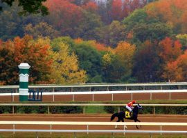 Keeneland's Fall Meet doesn't leave much to the imagination. It packs a hefty stakes punch: 22 stakes races ini 17 days. (Image: Twitter/Keeneland)