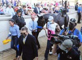 Kentucky Derby winner Medina Spirit remains the focus of a legal battle over his urine sample. On Wednesday, a Kentucky judge allowed further testing on the colt. (Image: Churchill Downs/Coady Photography)