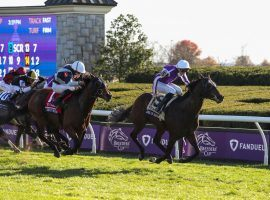 Order of Australia sent disorder into the betting markets when he won last year's Breeders' Cup Mile at 73/1. He is expected to meet favorite Palace Pier in the Queen Anne Stakes. A berth in the Breeders' Cup Mile at Del Mar awaits the winner. (Image: Breeders' Cup/Eclipse Sportswire)