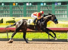 The Los Alamitos Derby, won by Uncle Chuck last year, has struggled to fill fields lately. It was postponed from Saturday to Sunday in an effort to draw more competitors. (Image: Benoit Photo)